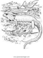 eidechse 8 gratis Malvorlage in Schlangen, Tiere   ausmalen