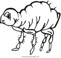 floh 1 gratis Malvorlage in Insekten, Tiere   ausmalen