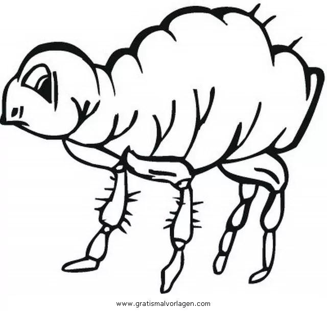 Floh 1 gratis Malvorlage in Insekten Tiere - ausmalen