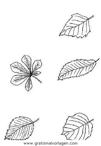 Herbst 61 gratis Malvorlage in Herbst Natur - ausmalen