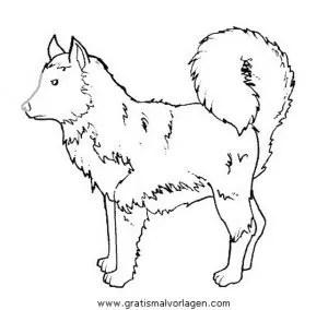 Ausmalbilder Hunde Husky - x13 ein Bild zeichnen