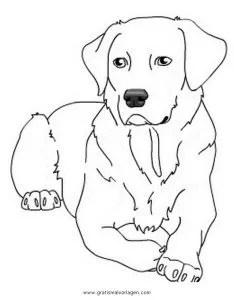 Labrador 2 gratis Malvorlage in Hunde Tiere - ausmalen