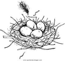 Nest gratis Malvorlage in Diverse Malvorlagen, Garten ...