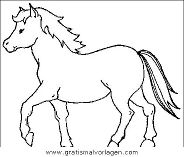 Pferde 11 gratis Malvorlage in Pferde Tiere - ausmalen