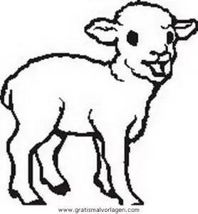 Schafe 01 gratis Malvorlage in Schafe Tiere - ausmalen