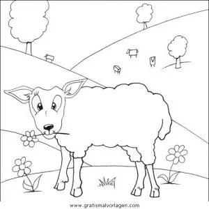 Schafe 11 gratis Malvorlage in Schafe Tiere - ausmalen