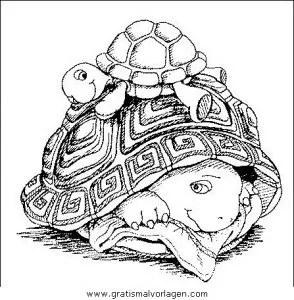 Schildkroten 37 gratis Malvorlage in Schildkröten Tiere