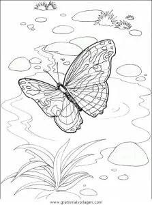 Malvorlage Schmetterling Einfach