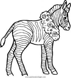 Zebras 50 gratis Malvorlage in Tiere Zebras - ausmalen