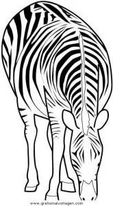 Zebras 62 gratis Malvorlage in Tiere Zebras - ausmalen