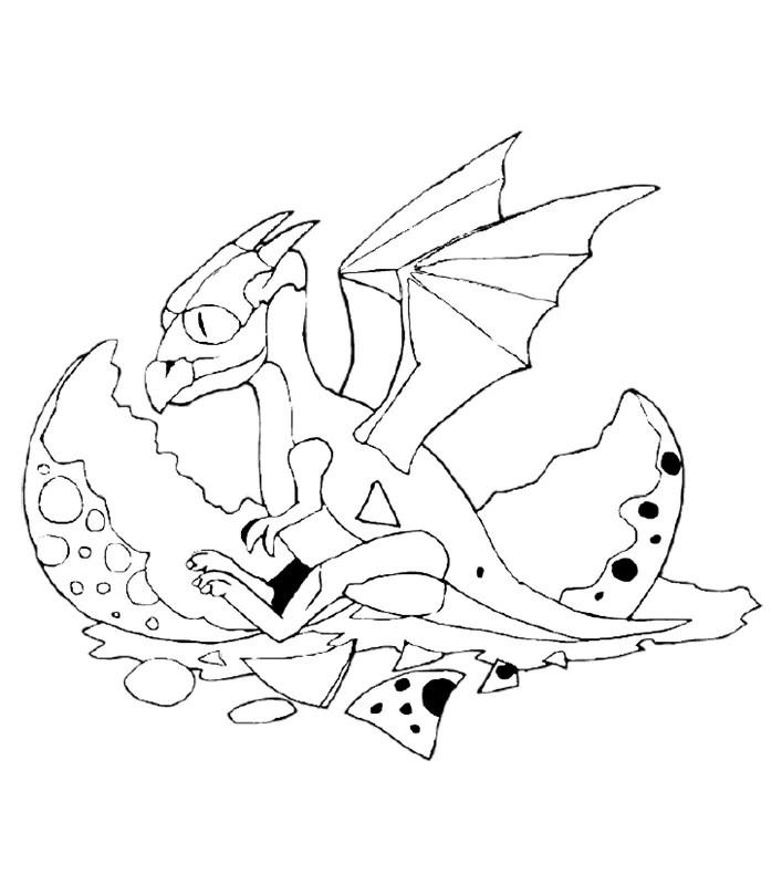 Malvorlagen Drachen Eragon