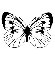 Insekten 00254 gratis Malvorlage in Insekten, Tiere   ausmalen