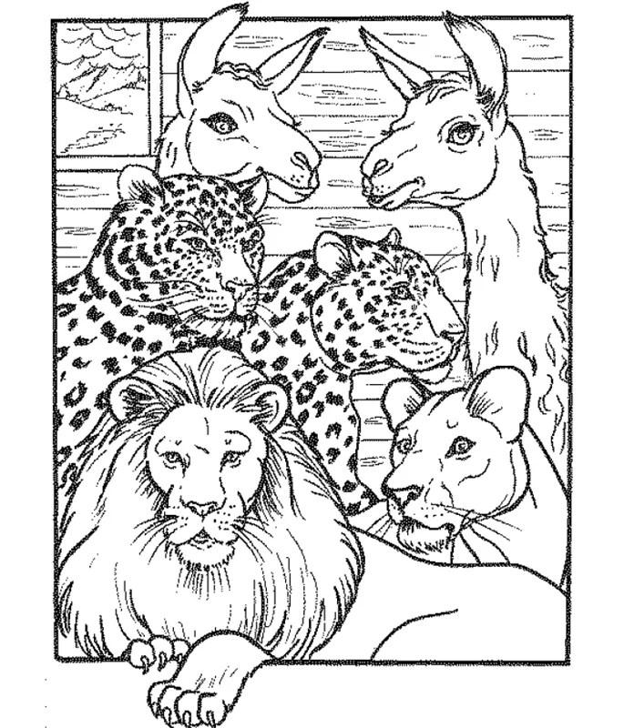 Zoo_00384 gratis Malvorlage in Tiere Zoo - ausmalen