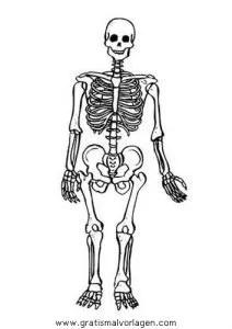 Menschlicher Körper gratis Malvorlage in Diverse