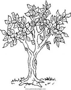 Baum gratis Malvorlage in Diverse Malvorlagen Garten