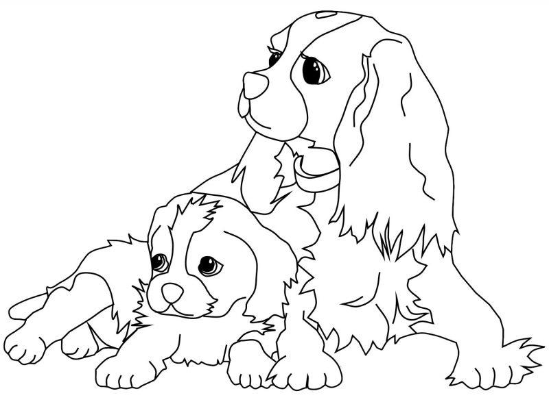 Dibujos de perros para colorear e imprimir gratis