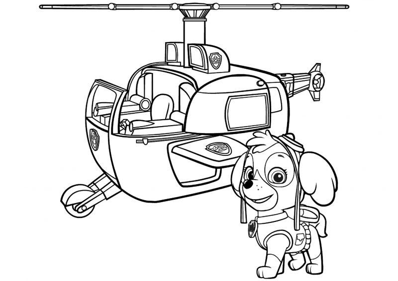 Skye é uma das personagens principais, da série de sucesso ( principalmente entre as crianças) de desenho animado patrulha canina, fazendo. Dibujos de La Patrulla Canina para colorear, Paw Patrol