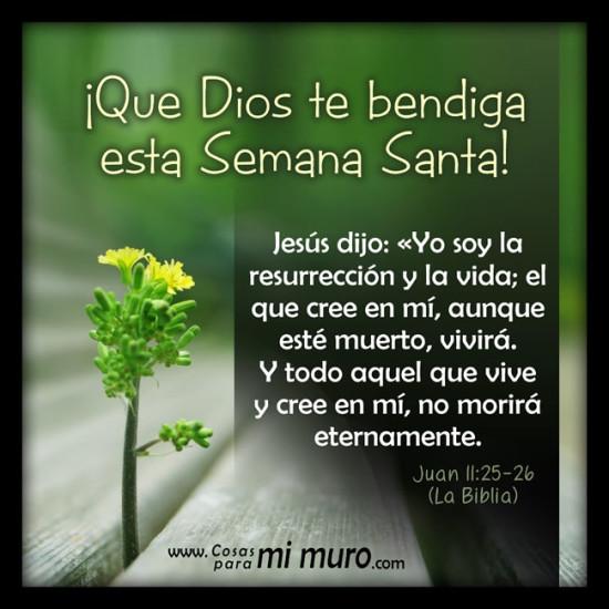 Para Cristianas Ninos Peliculas