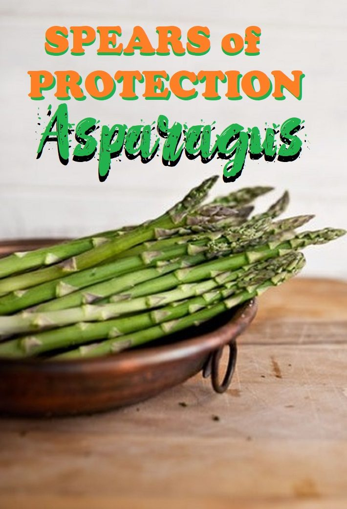 SPEARS OF PROTECTION – ASPARAGUS