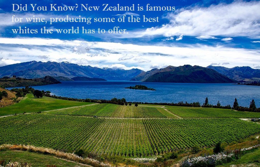Travel,New Zealand