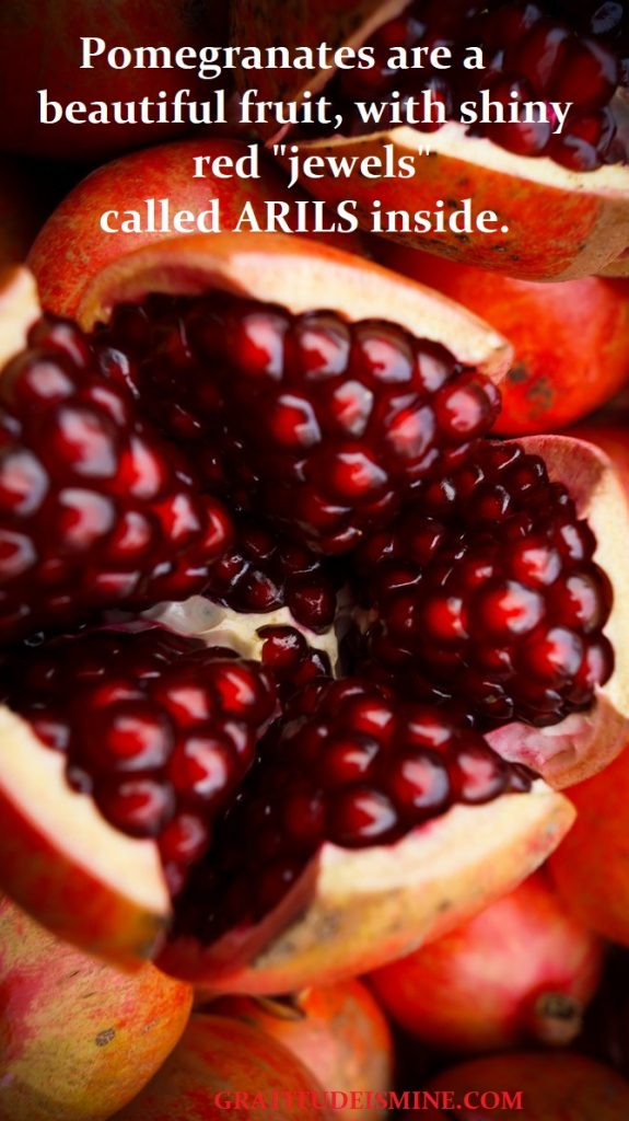 THE JEWEL OF WINTER - POMEGRANATE