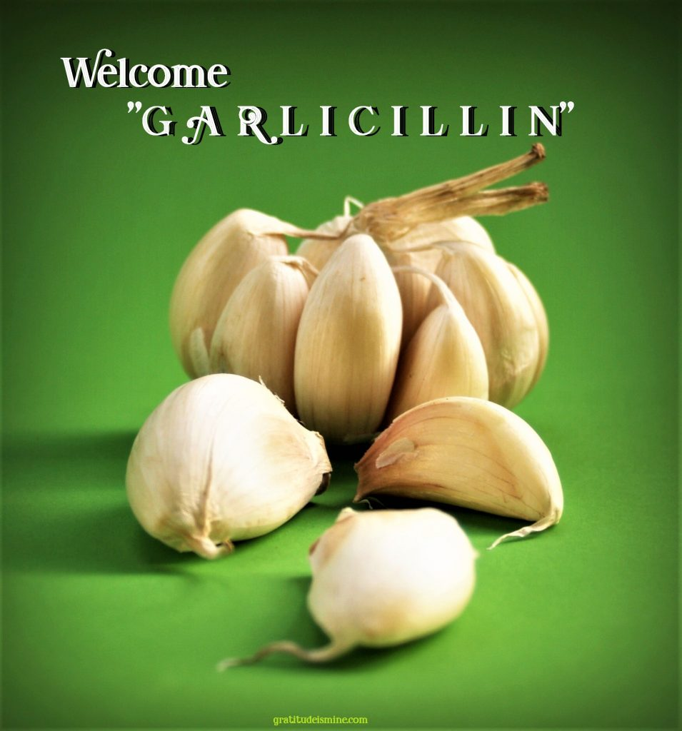 "WELCOME ""GARLICILLIN"" -Great Bulbs of Power"