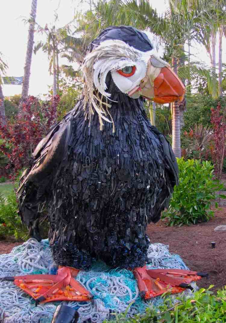 SW-SD-Tufted-Puffin-at-SW