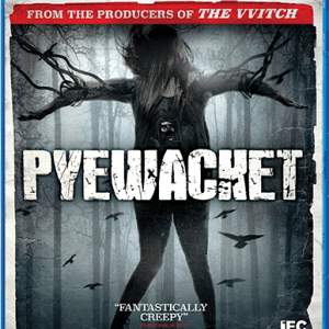 Shout! Factory Pyewacket Blu-ray Cover