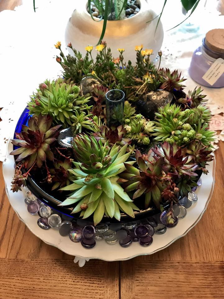 40 Amazing and Easy Outdoor Succulent Garden Ideas For You And Your Creative Mind