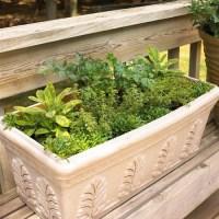 50+ Enchanting Indoor Herb Garden Ideas That Are ...