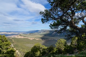 Along the Harpers Corner road in Dinosaur National Monument