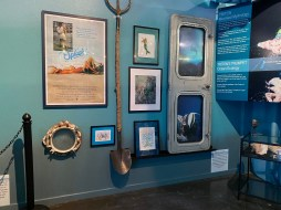 International Mermaid Museum aberdeen 15