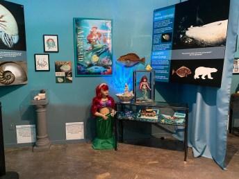 International Mermaid Museum aberdeen 25