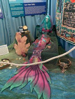 International Mermaid Museum aberdeen 9