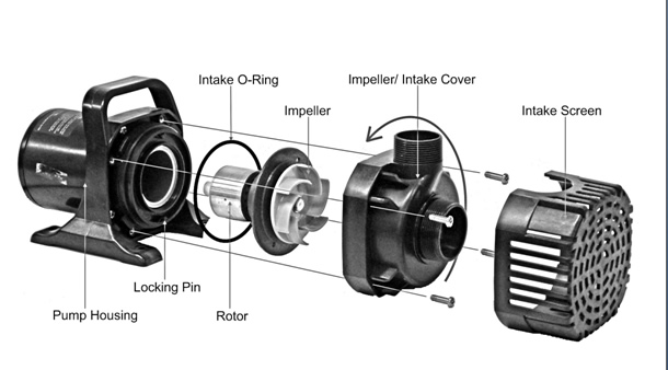 Atlantic TW Series Pumps Operation Manual