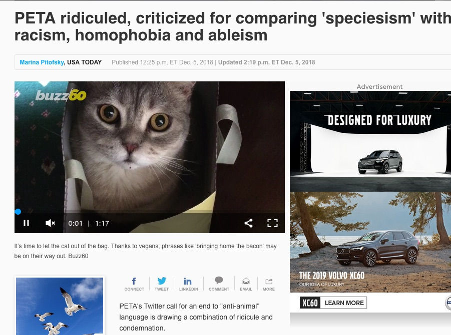 peta and the s