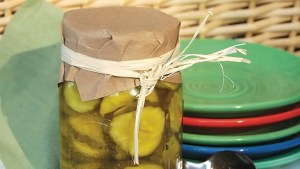 Cathy's Bread and Butter Pickles Recipe