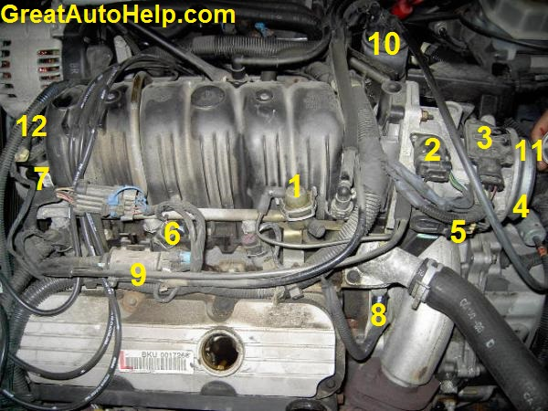 2004 chevy cavalier engine diagram farmall super c wiring 3800 v6 sensor locations pictures and diagrams