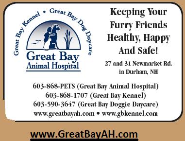Great Bay Animal Hospital