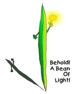 Bean of Light-new