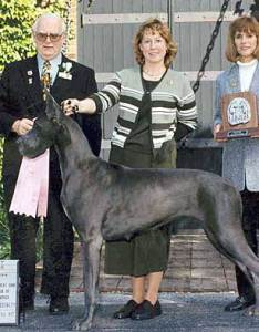 Growth rate in great dane puppies also danes chart greatdanelady rh
