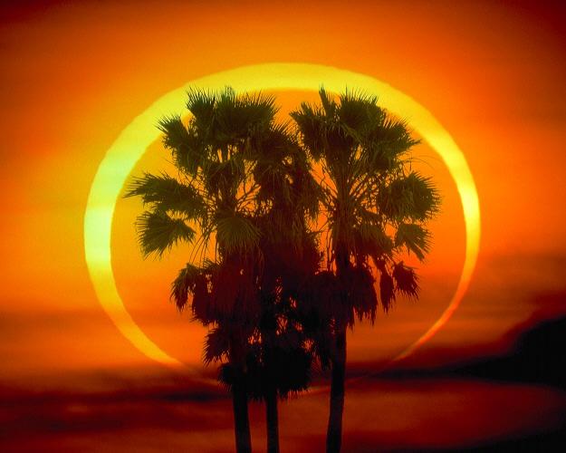 https://i0.wp.com/www.greatdreams.com/solar/2009/RingOfFire_mammana-1982.jpg