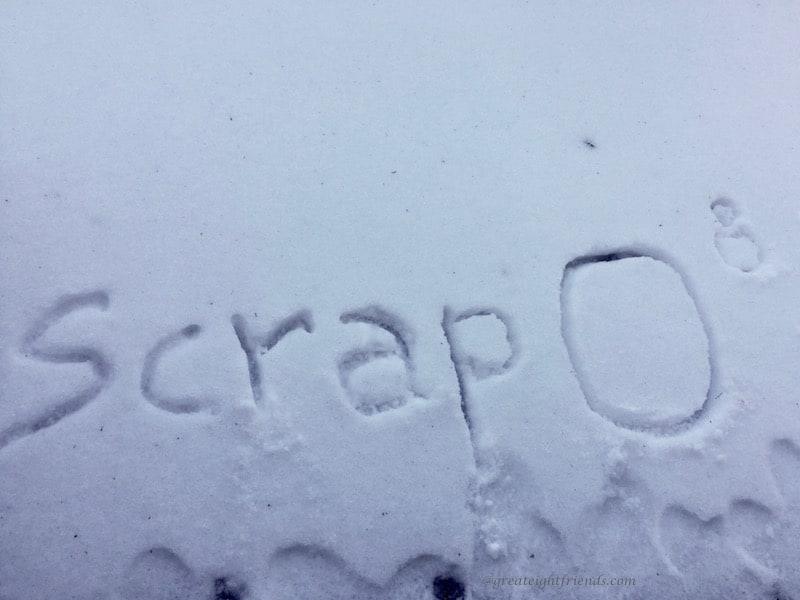 Scrapbooking Scrap Snow