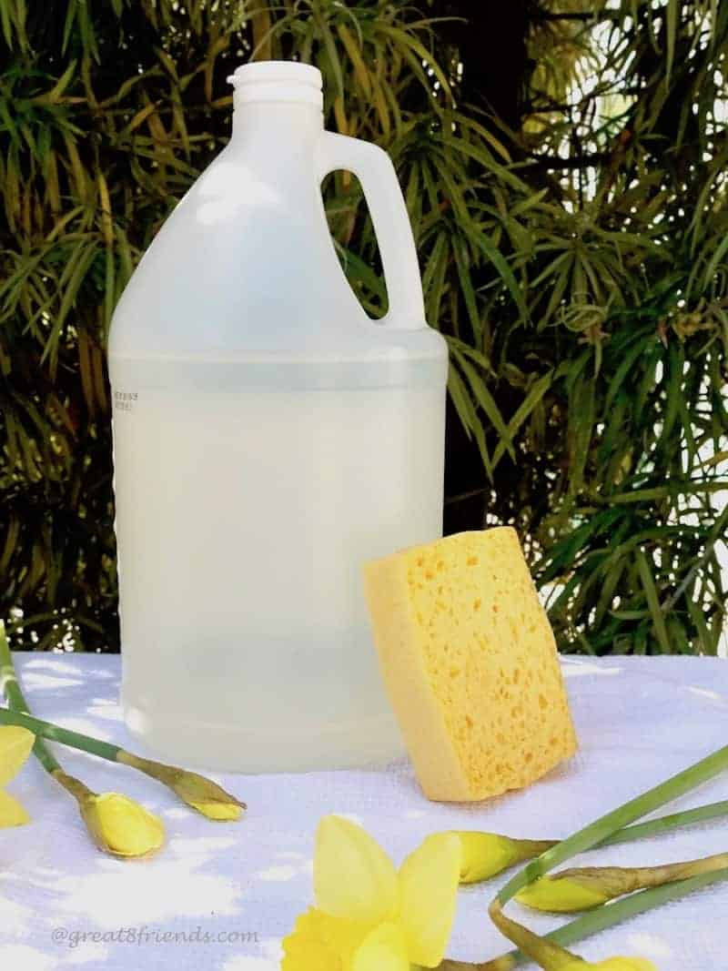 Spring into Clean Using Vinegar!