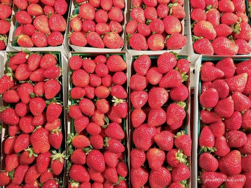 Fresh strawberries from a farm are the best and most fresh fruit to serve.