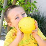 Lemon Chicken 6