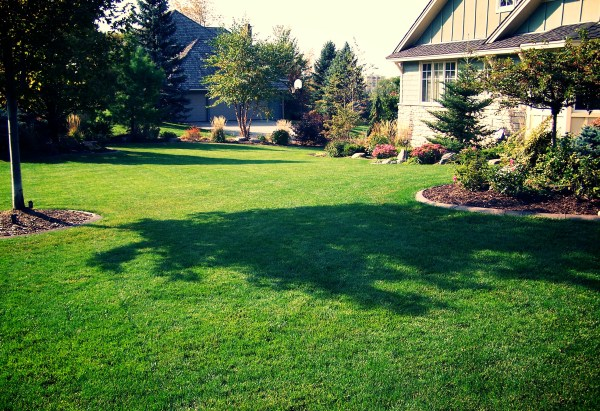 lawn care - great goats landscapinggreat