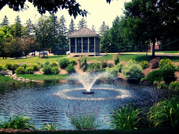 ponds & water features - great