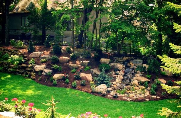 Great Backyard Landscaping