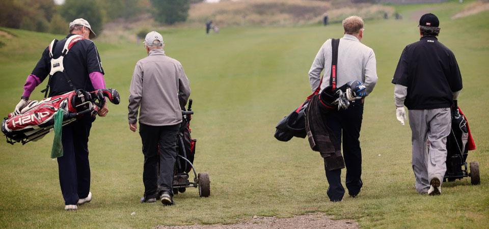 golf_4_up